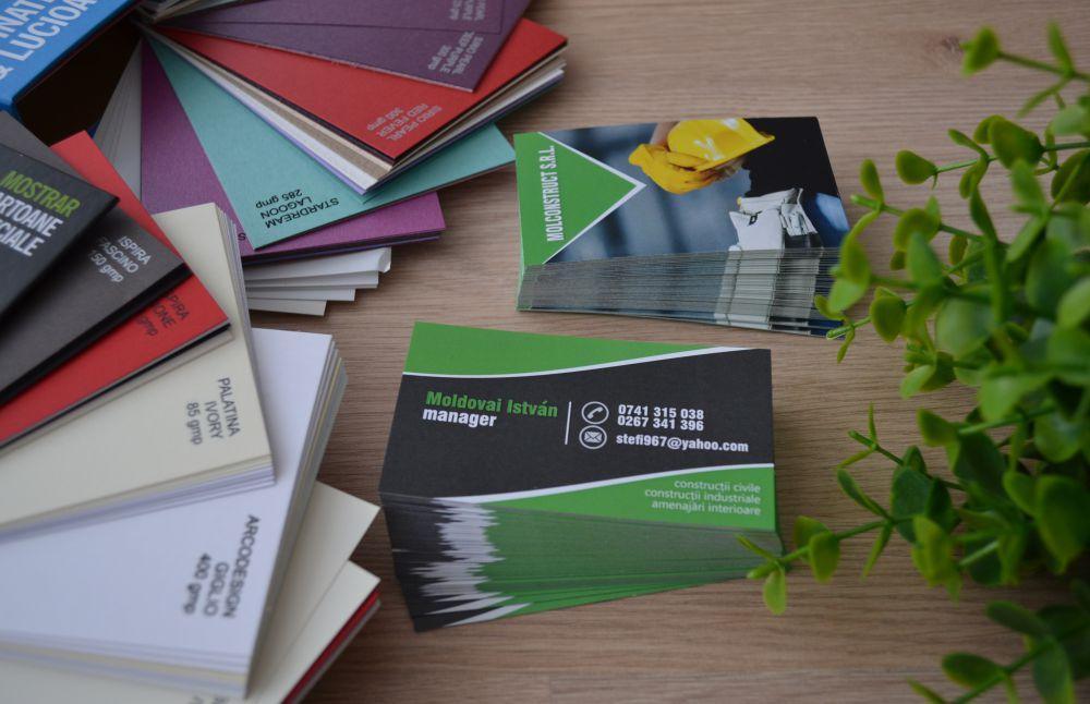 Mol Construct Srl - Carti de vizita