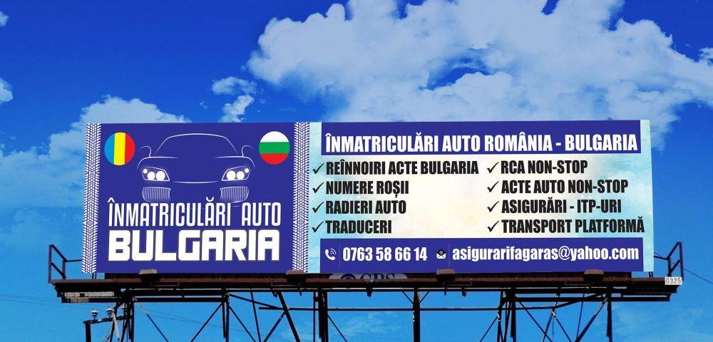 Grafica Banner Inmatriculari Auto