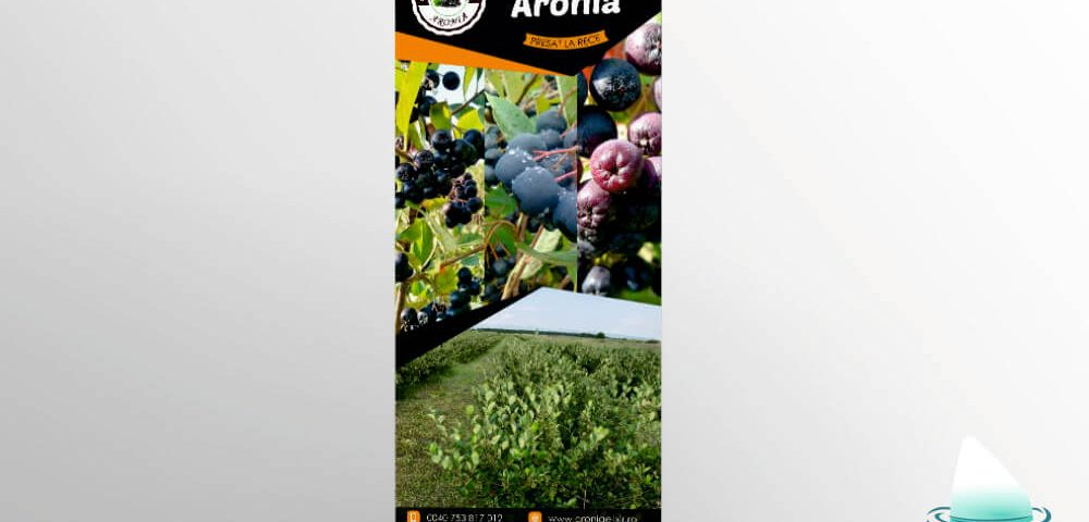 Grafica Rollup Aronia Fruits